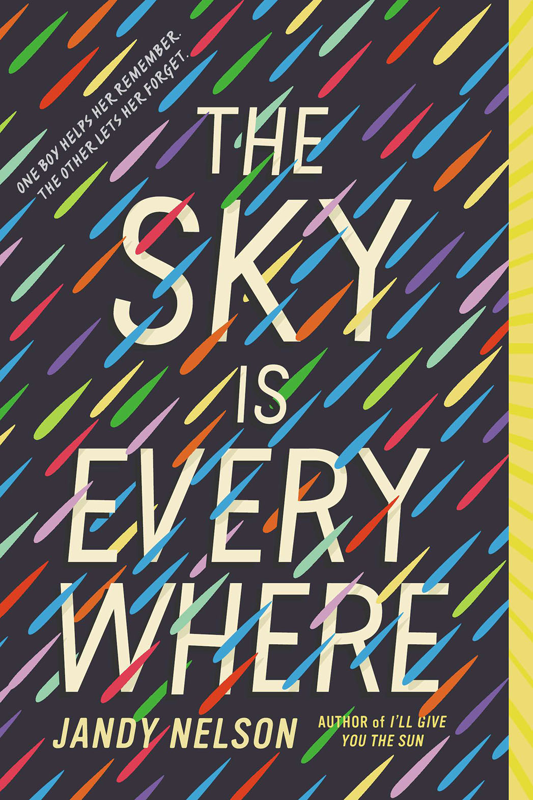 The Sky is Everywhere Cover - P 2015