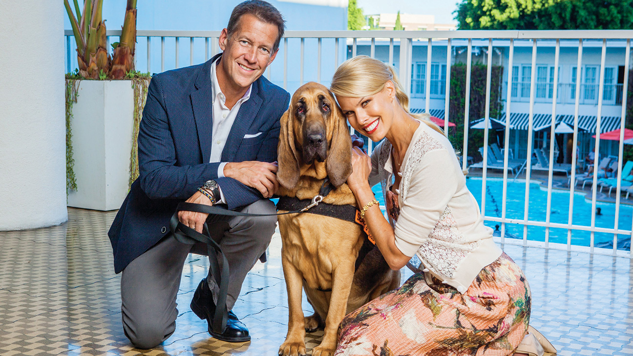 Hallmark Channel Has Gone to the (Hero) Dogs - H 2015