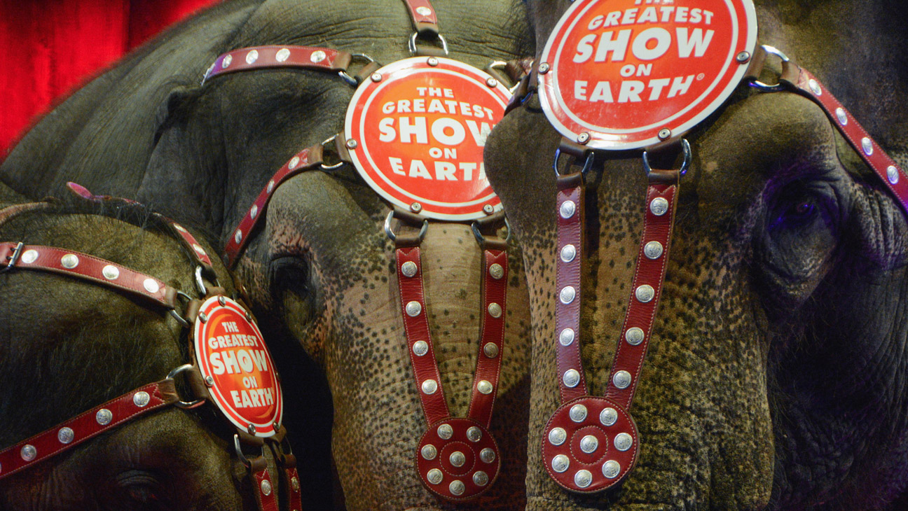 Ringling Brothers Elephants - H 2016