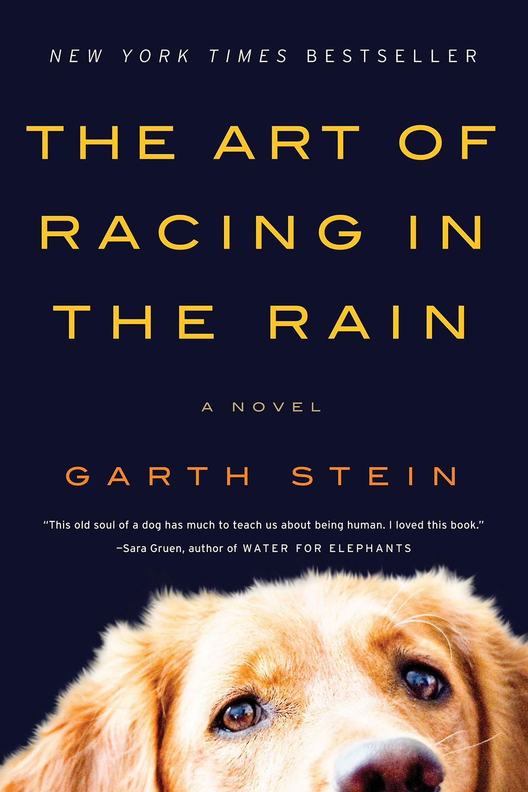 Art of Racing in the Rain Cover - P 2016