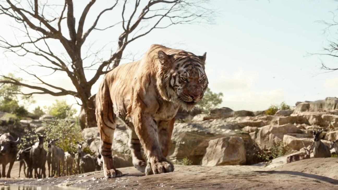 Shere Khan Jungle Book - H 2016