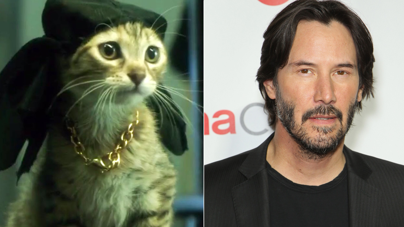 Keanu Cat and Keanu Reeves Split  - H 2016
