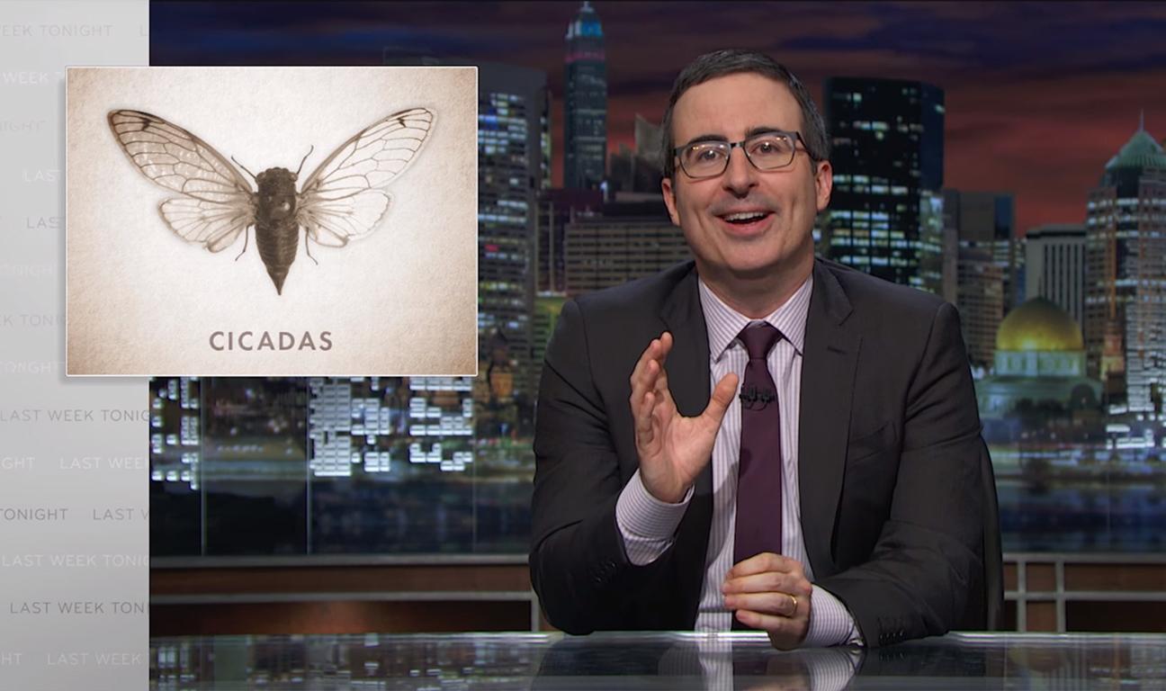 John Oliver Cicadas H 2016