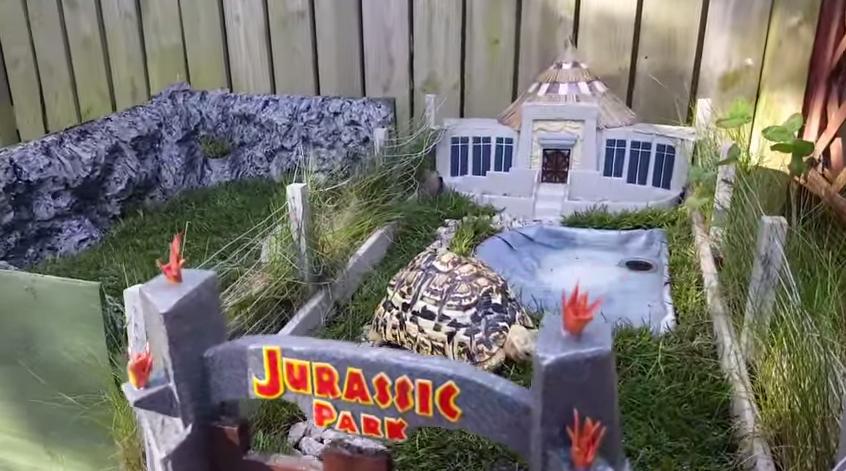 Jurassic Park Turtle - H 2016