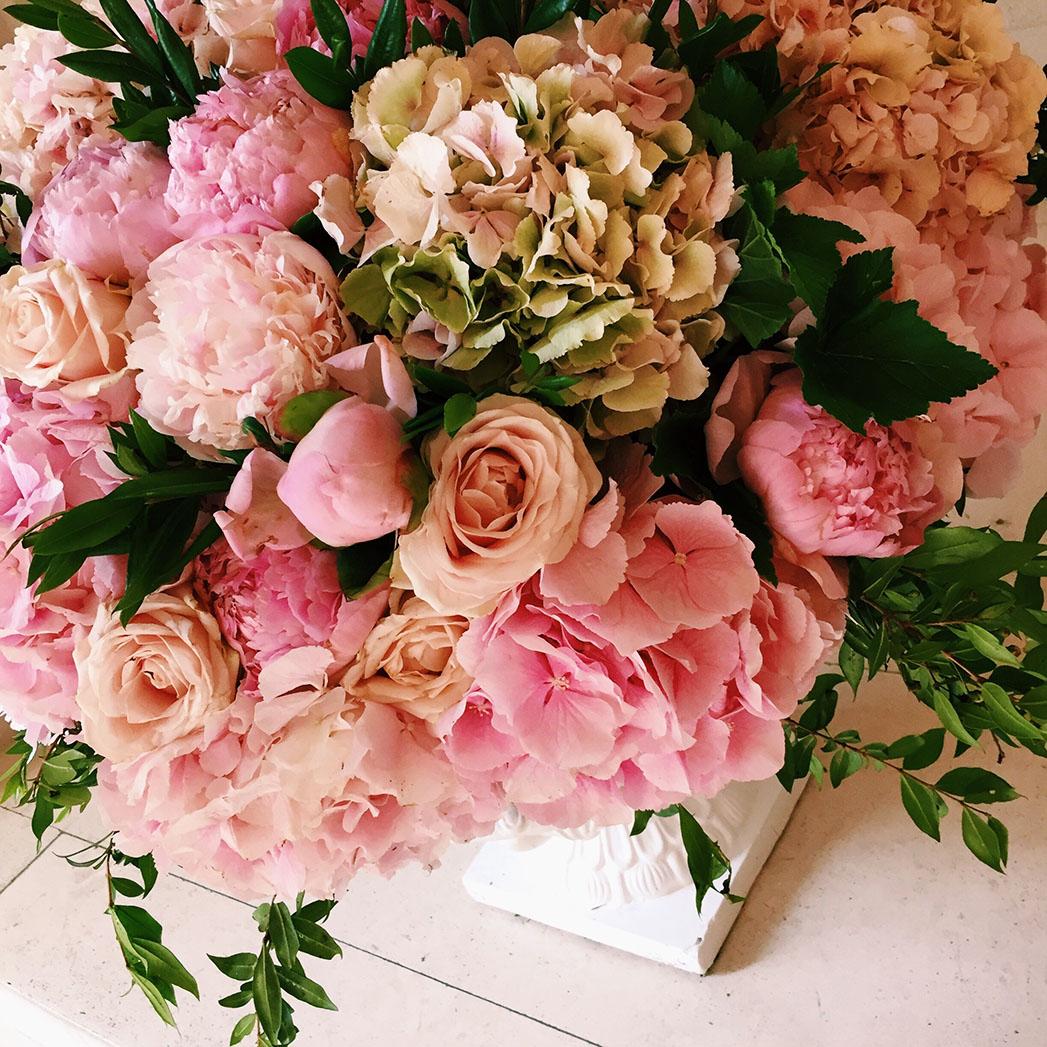 Carol_Flowers 2 - Publicity - H 2016