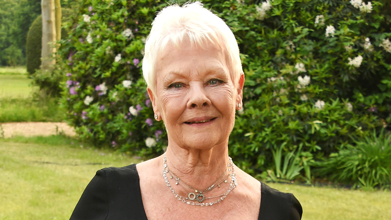 Judi Dench Getty H 2016