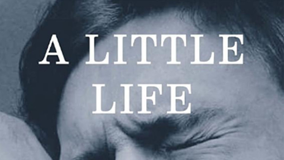 A little Life - Screen Shot - Book Cover-P 2016