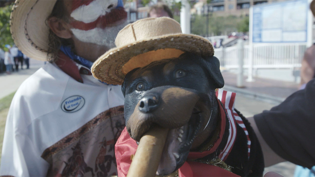 Triumph The Dog Election Special H 2016