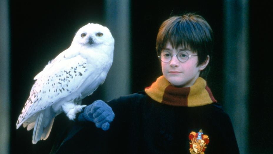 Harry_Potter_Hedwig_Sorcerer's_Stone