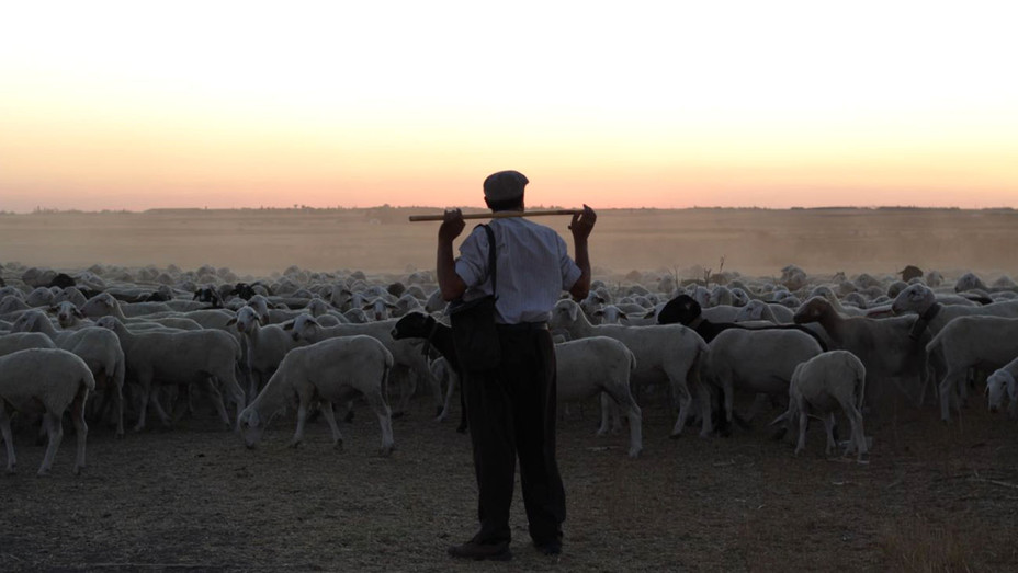 THE SHEPHERD - still 1 -H 2016