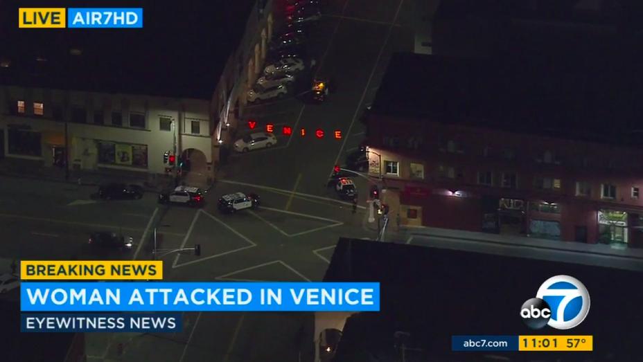 Venice Stabbing Screengrab - H 2016