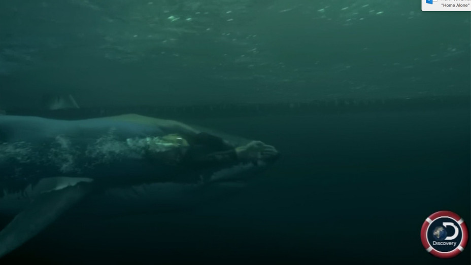 Michael Phelps vs the shark screen grab - H 2017