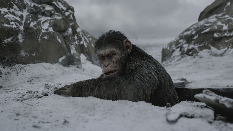 War for the Planet of the Apes Still 8 - Publicity - H 2017