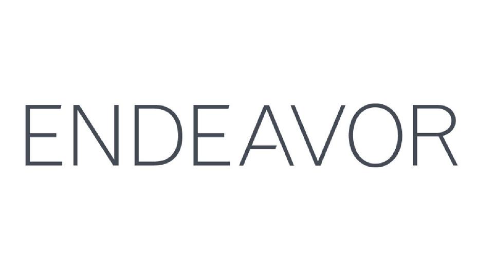 Endeavor Logo - Publicity - H 2017