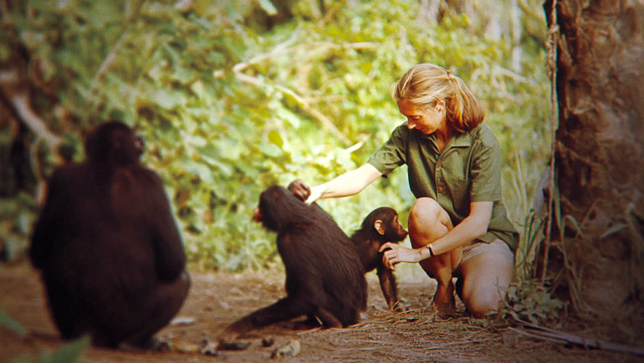 Jane Goodall - Brett Morgen Documentary  - Publicity-H 2017