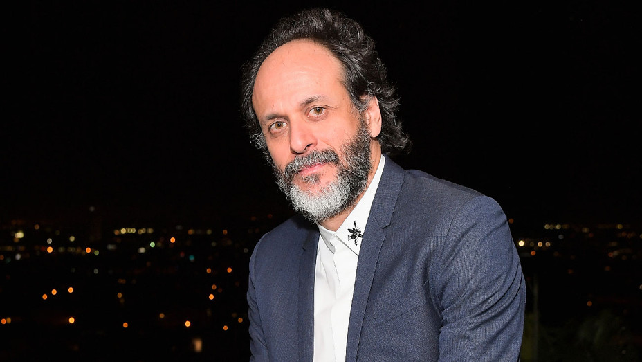 Luca Guadagnino - GQ and Dior Homme Private Dinner - Getty - H 2017