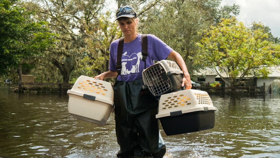 ASPCA Pet Saving - Publicity - H 2017