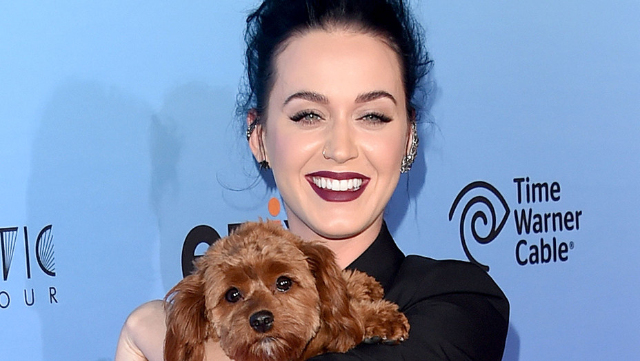 Katy Perry and her dog Butters - EPIX's Katy Perry The Prismatic World Tour Screening- Getty-H 2018