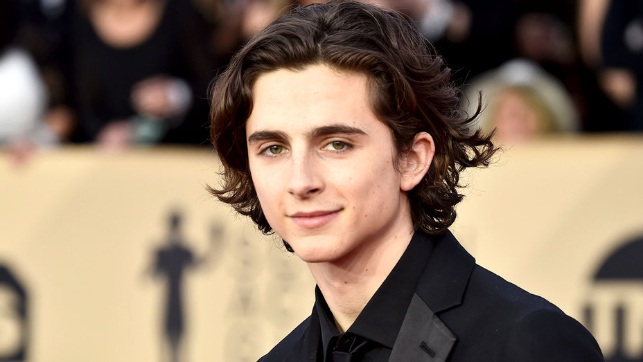 Timothee Chalamet attends the 24th Annual Screen Actors Guild Awards -Getty-H 2018