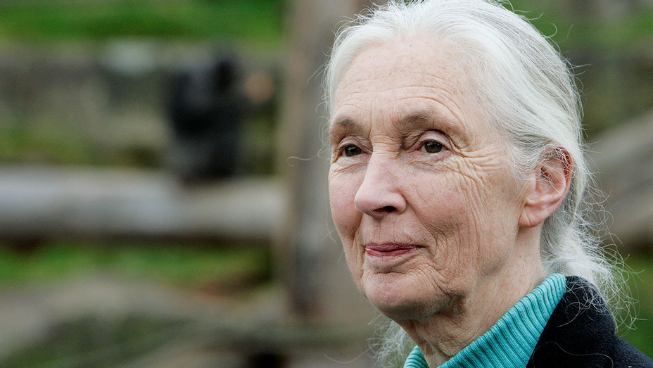 Dr Jane Goodall - Getty - H 2018