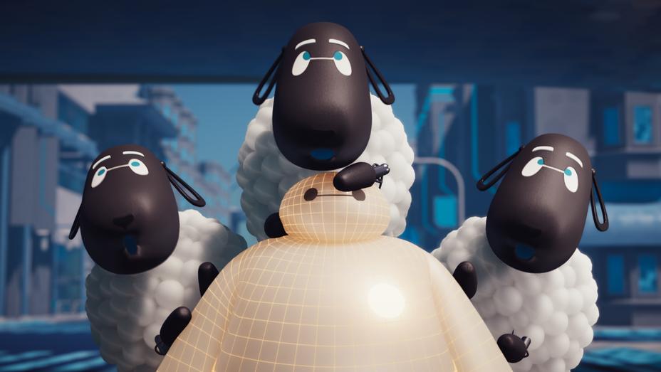 Sheep still - H 2018
