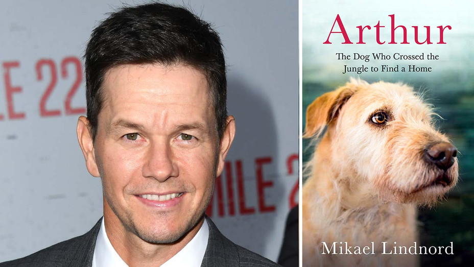 Mark Wahlberg-Arthur: The Dog who Crossed the Jungle to Find a Home-Getty-Publicity-Split-H 2019