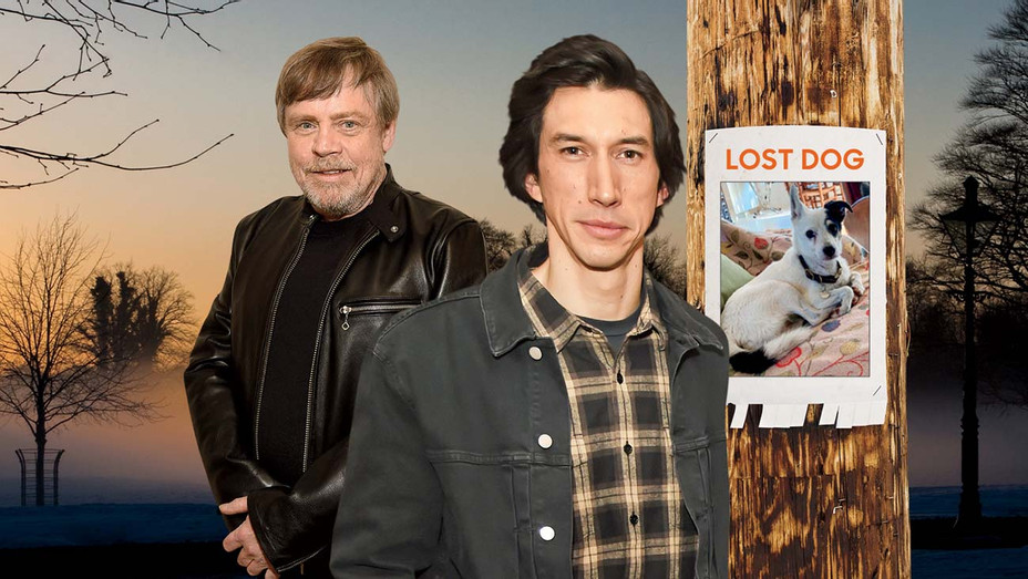 Star Wars' Co-Stars Adam Driver and Mark Hamill Team Up to Find Lost Dog - Graphic- H 2019