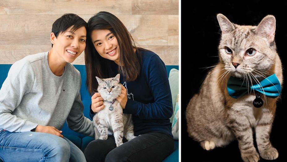 Meet CAA's Million-Dollar Cat Client - Publicity - Split - H 2019