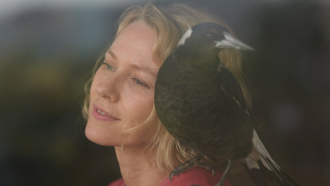 Toronto: Naomi Watts Discusses Live Birds as Co-Stars in 'Penguin Bloom'