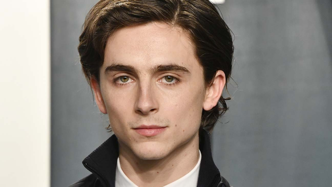 Timothee Chalamet Plays Edward Scissorhands' Son in Cadillac's Super Bowl Ad