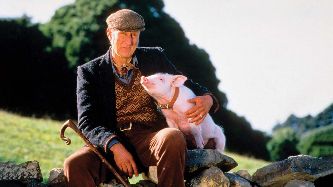 Hollywood Flashback: James Cromwell Reflects on 'Babe' 25 Years Later