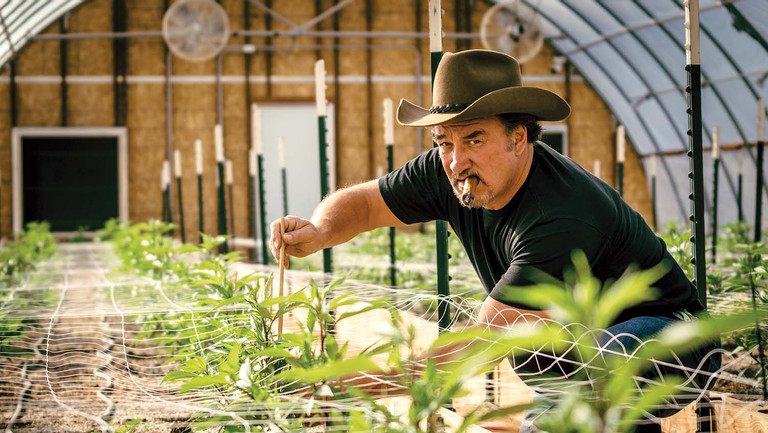 """<p>"""" 'According to Jim' afforded me not to have to do gigs so I can chase the magic again,"""" says Jim Belushi, pictured at Belushi's Farm in Eagle Point, Oregon. """"I'm a magic chaser.""""</p>"""