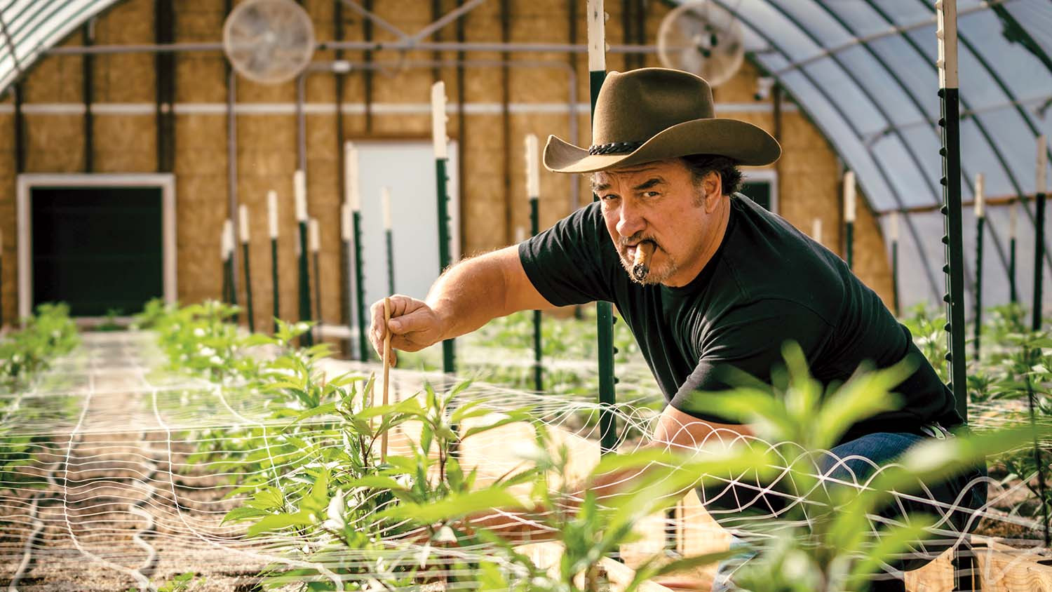 Jim Belushi on the Pain of Brother John's Death and His New Chapter as a Cannabis Farmer