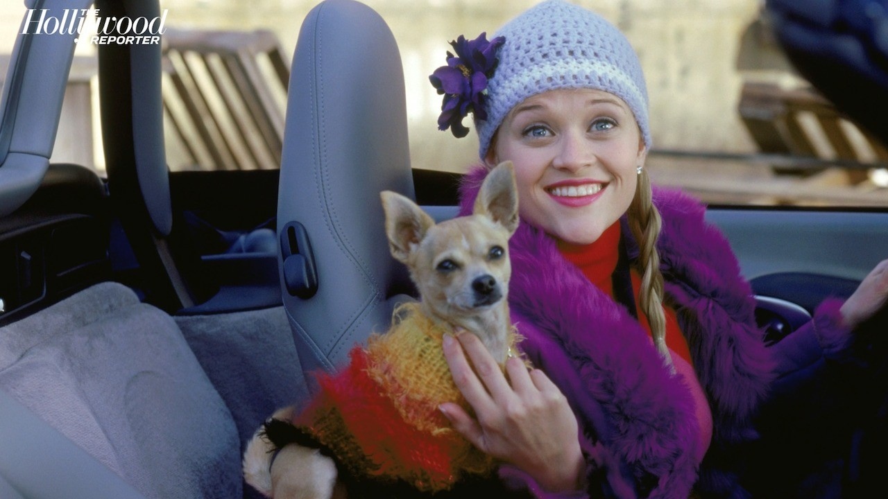 'Legally Blonde 3' Release Date Pushed to 2022