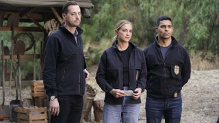 CBS Studios Delays Filming on 'NCIS,' Other Shows as L.A. COVID Cases Surge