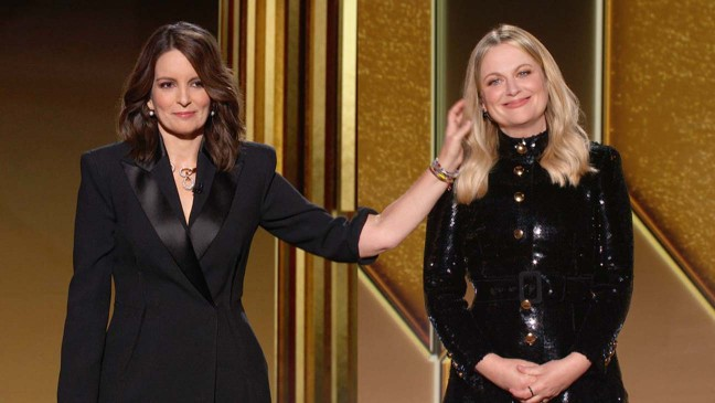 The 78th Golden Globe Awards: TV Review
