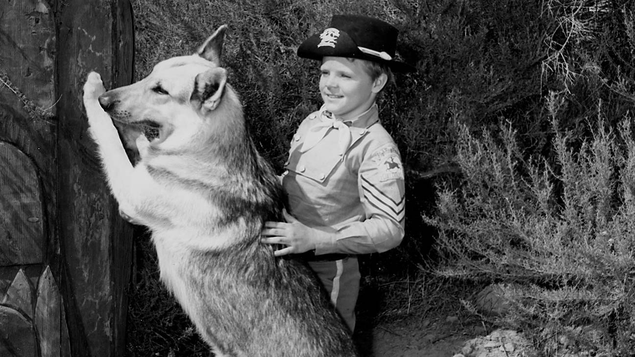 Lee Aaker, Child Actor on 'The Adventures of Rin Tin Tin,' Dies at 77